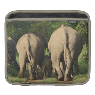 Indian Elephants on the jungle track,Corbett iPad Sleeve