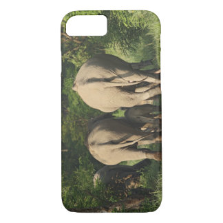 Indian Elephants on the jungle track,Corbett iPhone 7 Case