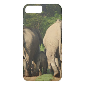 Indian Elephants on the jungle track,Corbett iPhone 8 Plus/7 Plus Case