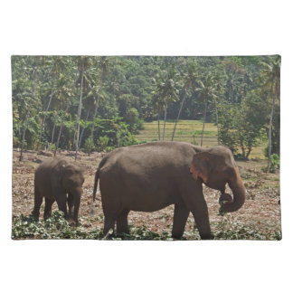 Indian Elephants Placemat