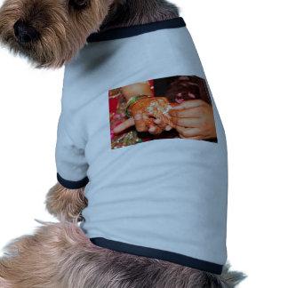 Indian engagement dog clothing