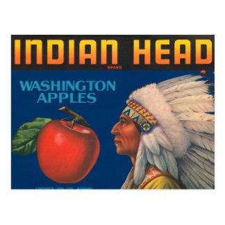 Indian Head Washington Apples Vintage Ad Post Cards