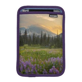 Indian Henry's Hunting Ground at sunrise iPad Mini Sleeve