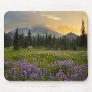 Indian Henry's Hunting Ground at sunrise Mouse Pad