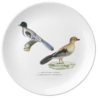 Indian Jays Plate Porcelain Plates