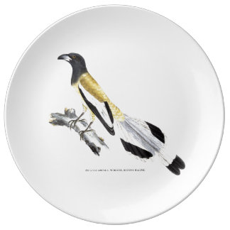 Indian Magpie Plate Porcelain Plate
