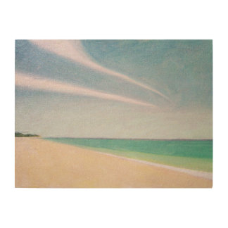 Indian Ocean 1996 Wood Print