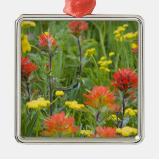 Indian paintbrush and biscuitroot wildflowers christmas ornament