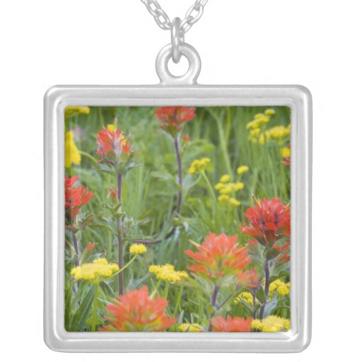 Indian paintbrush and biscuitroot wildflowers pendants