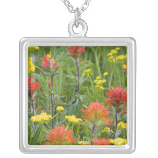 Indian paintbrush and biscuitroot wildflowers silver plated necklace