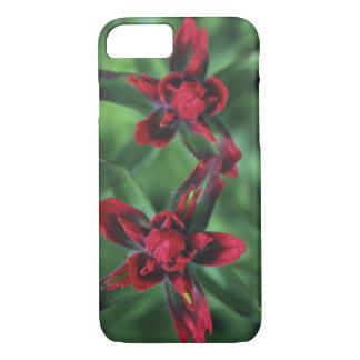 Indian Paintbrush, Banff NP, Alberta, Canada 2 iPhone 8/7 Case