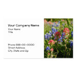 Indian Paintbrush Bluebonnet Business Card