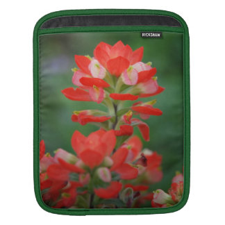 Indian Paintbrush iPad Sleeve