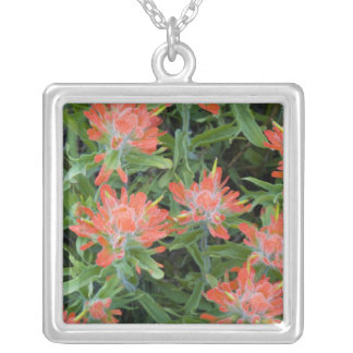 Indian paintbrush wildflowers in the Many Square Pendant Necklace