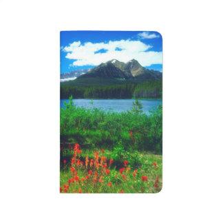 Indian Paintbrush Wildflowers Journal