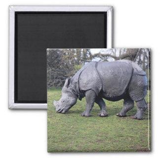 Indian Rhinoceros Magnet