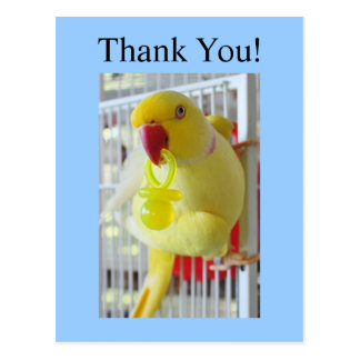 Indian Ringneck Thank You Baby Shower Postcard