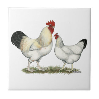 Indian River Chickens Small Square Tile