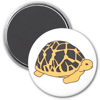 Indian Star Tortoise Magnet (#1 black)