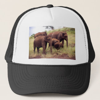 Indian wild elephants trucker hat