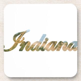 Indiana Coaster