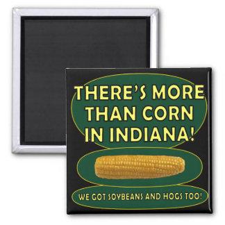Indiana Corn Square Magnet