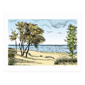 Indiana Dunes Postcard