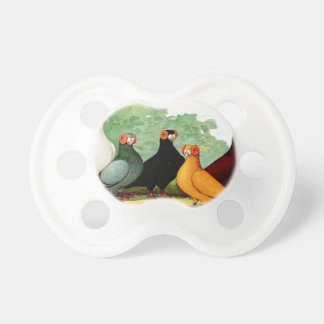 Indianer Pigeons Baby Pacifier