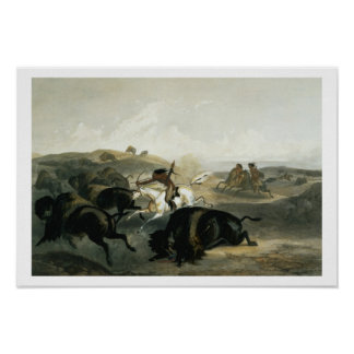 Indians Hunting the Bison, plate 31 from Volume 2 Poster