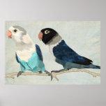 INDIGO BIRDS Art Poster