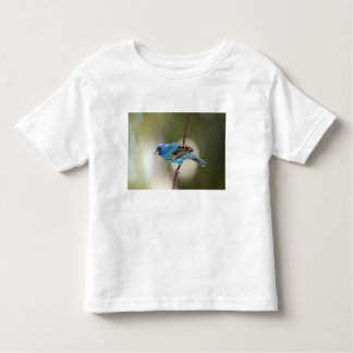 Indigo Bunting perched on bare branch Toddler T-Shirt