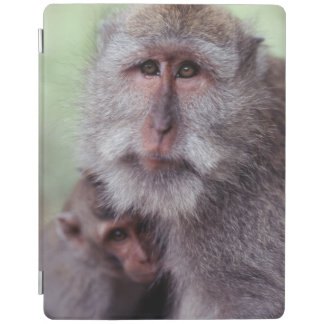Indonesia, Bali, Ubud, Long-tailed Macaque 1 iPad Cover