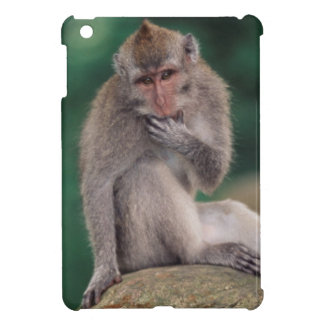 Indonesia, Bali, Ubud, Long-tailed Macaque 2 Case For The iPad Mini