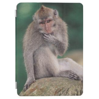 Indonesia, Bali, Ubud, Long-tailed Macaque 2 iPad Air Cover