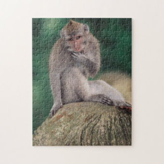 Indonesia, Bali, Ubud, Long-tailed Macaque 2 Jigsaw Puzzle