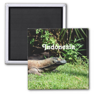 Indonesia Komodo Dragon Magnet