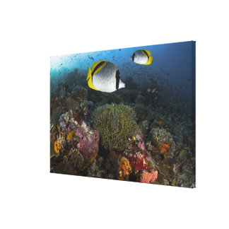 Indonesia, Komodo National Park. Lined Canvas Print