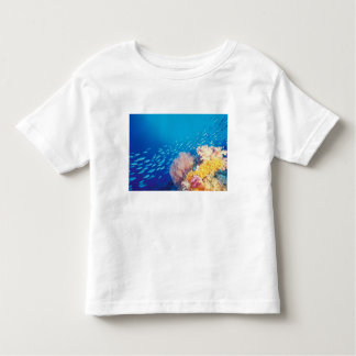 Indonesia, Papua formerly Irian), Misool, Toddler T-Shirt