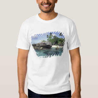 Indonesia. Rock formations along shore Shirts