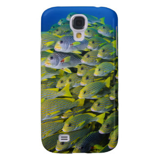Indonesia. Schooling Fish Galaxy S4 Case