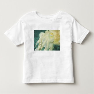 Indonesia, South Sulawesi Province, Wakatobi 2 Toddler T-Shirt