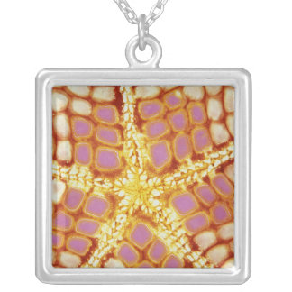 Indonesia. Starfish mouth, detail. Silver Plated Necklace