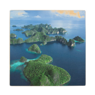 Indonesia, West Papua. Aerial Of Raja Ampat Wood Coaster