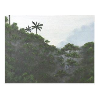 Indonesian Rainforest Postcard