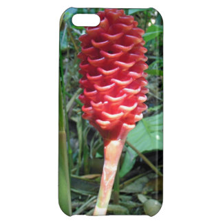 Indonesian Wax Ginger iPhone 5C Case