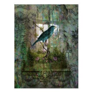 Indoor Garden with Bird Post Cards