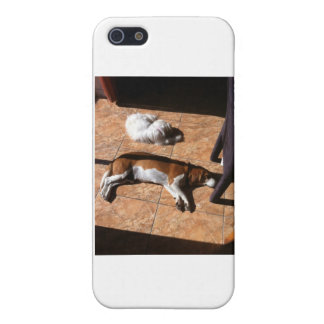 Indoor Tanning Doggy Style Case For iPhone 5