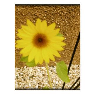 Industrial Sunflower Postcard
