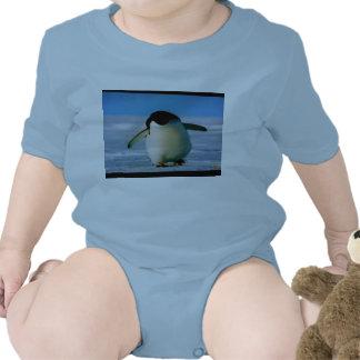 INFANT CREEPER - PENGUIN