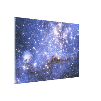 Infant Stars in Neighboring Galaxy Canvas Print